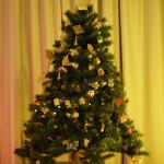 Mihaela Bachmann - Victoria & Albert Christmas Tree, achizitionat de Romanian Business Consult